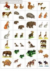 """Данное лото состоит из 25 карточек, разделенных на 2 части. В первой части карточки изображены животные в единственном числе, во второй части - во множественном числе. Собирая пару (ед. ч. - мн. ч. ), дети упражняются в словообразовании (""""Лиса-лисы, ёж-ежи, т. д. )"""