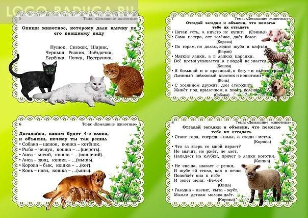 чистоговорки о животных