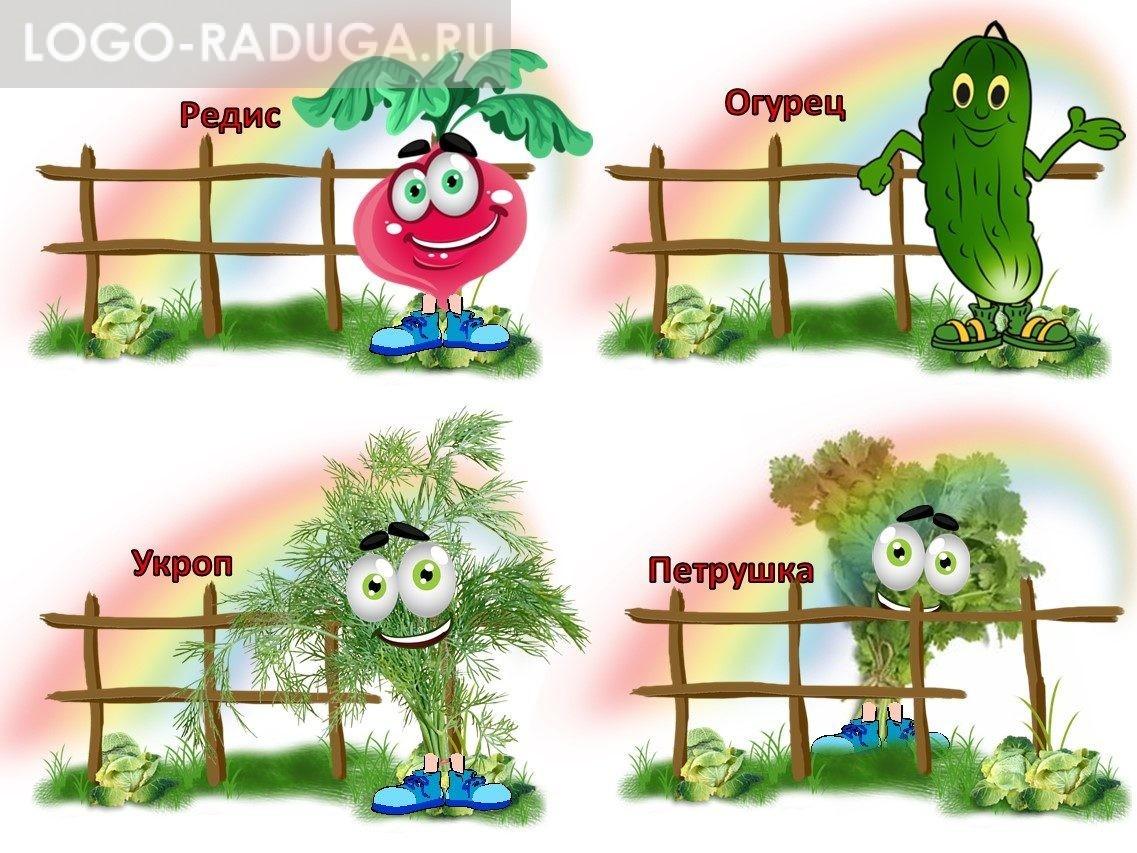 Таблички на огород в детском саду